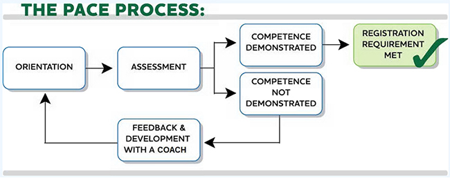 The Pace Process Infographic